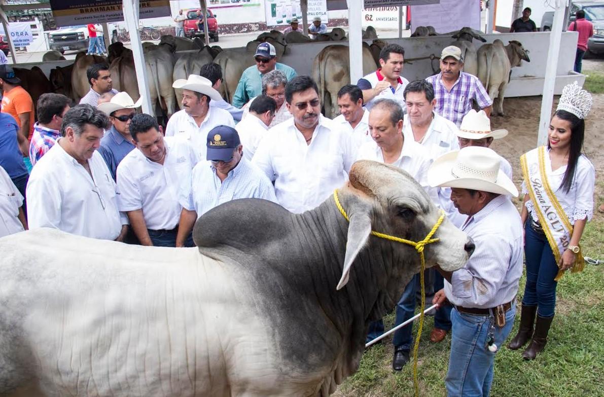 Borderland Beat Amado Carrillo Fuentes Death Revenge